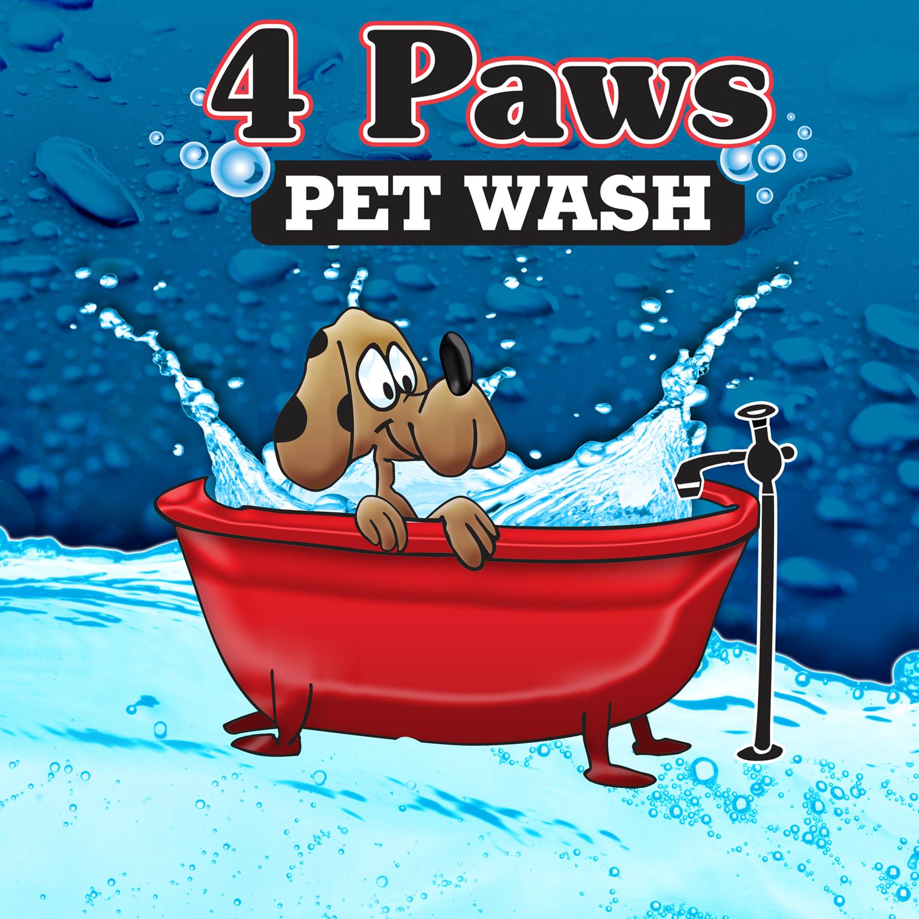 4 Paws Pet Wash Chemicals