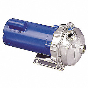Goulds NPE Series Centrifugal Pump/Motor