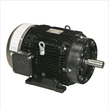 Techtop Motor 15HP 3450RPM